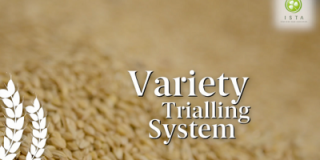 The road to Irish Certified Seed - Variety Trialling
