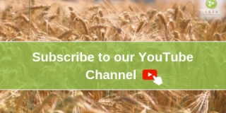 Subscribe to our new YouTube channel